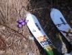 Jarný Retezat na skialpoch 2017