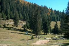 Cabana Padiš, pohorie Apuseni (Rumunsko)