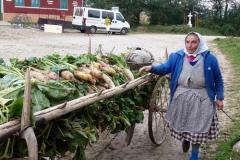 Jeden super zájazd,alebo Rumunský Banát