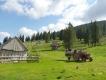 Rumunsko - Apuseni - máj 2015